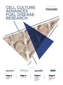 Cell Culture Advances Fuel Disease Research